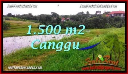 DIJUAL TANAH di CANGGU BALI 15 Are di Canggu Batu Bolong
