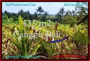 TANAH JUAL MURAH CANGGU BALI 4.35 Are View Sawah