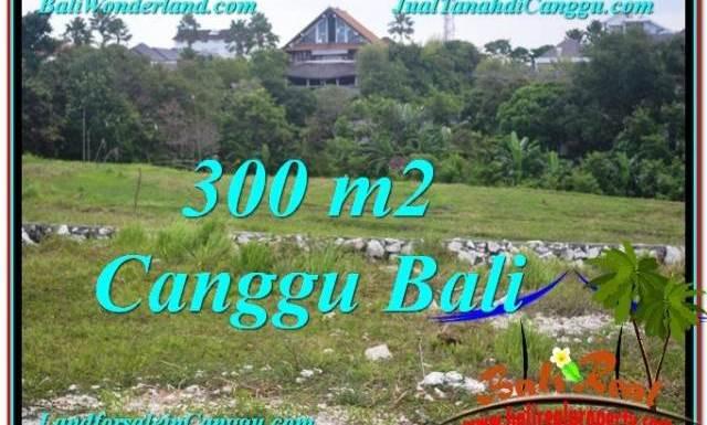 TANAH MURAH di CANGGU 300 m2 View sawah lingkungan villa