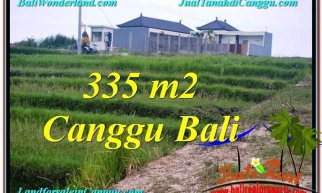 TANAH JUAL MURAH CANGGU BALI 335 m2 View sawah, sungai, lingkungan villa