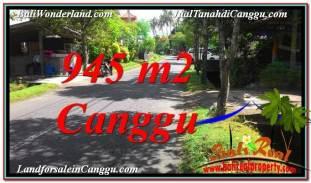 TANAH DIJUAL di CANGGU BALI 945 m2 di Canggu Pererenan