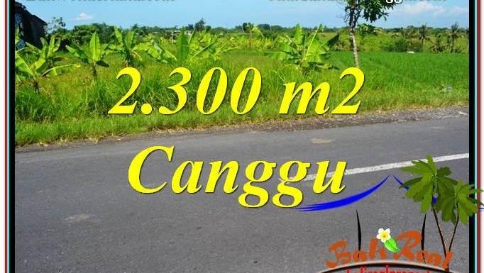 JUAL MURAH TANAH di CANGGU 2,300 m2 di Canggu Echo Beach