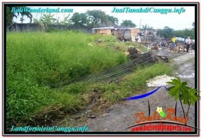 TANAH DIJUAL di CANGGU BALI TJCG215
