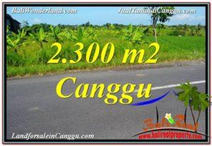 JUAL TANAH di CANGGU BALI 2,300 m2 View sawah,gunung, lingkungan villa