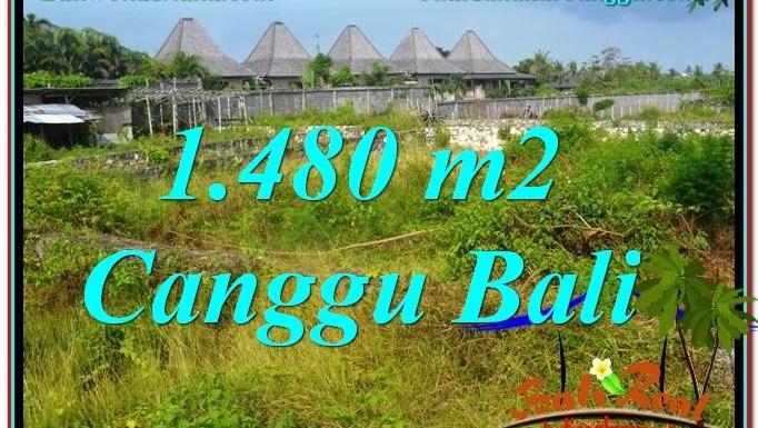 JUAL MURAH TANAH di CANGGU BALI TJCG212