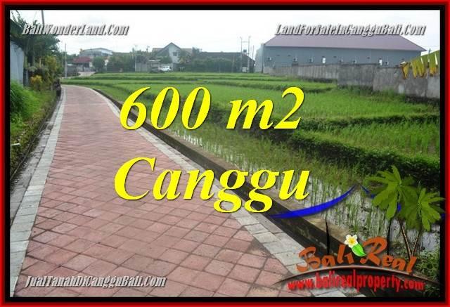 INVESTASI PROPERTI, TANAH DIJUAL di CANGGU BALI TJCG220