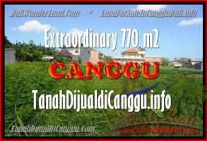 DIJUAL TANAH MURAH di CANGGU BALI 7,7 Are di Canggu Kerobokan