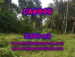 Tanah dijual di Bali 26,4 Are di Brawa