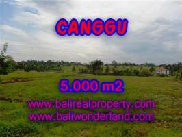 TANAH DI CANGGU BALI DIJUAL CUMA RP 3.250.000 / M2