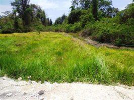 Dijual Tanah di Canggu Brawa cocok untuk villa 13 are – TJCG075E