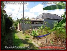 JUAL MURAH TANAH di CANGGU BALI 3,12 Are View kebun di lingkungan villa