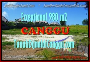 JUAL TANAH di CANGGU BALI 9,8 Are View Sawah, Sungai dan laut