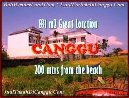 TANAH MURAH DIJUAL di CANGGU BALI 8,31 Are di Canggu Batu Bolong