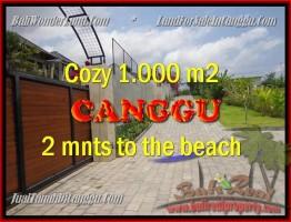 JUAL TANAH MURAH di CANGGU BALI 1.000 m2  View Sawah dan sungai , lingkungan villa