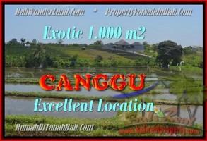 INVESTASI PROPERTI, DIJUAL TANAH di CANGGU TJCG168