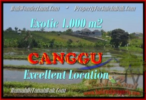 TANAH di CANGGU BALI DIJUAL MURAH 1.000 m2  View sawah dan laut linkungan villa