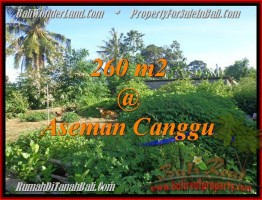 TANAH di CANGGU JUAL MURAH 260 m2  View sawah link villa