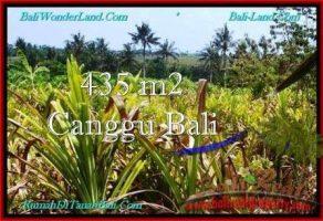 DIJUAL MURAH TANAH di CANGGU BALI 4.35 Are di Canggu Pererenan