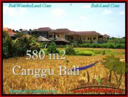 JUAL TANAH MURAH di CANGGU BALI 5.8 Are View sawah, lingkungan villa