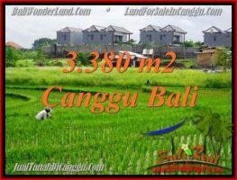 TANAH DIJUAL MURAH di CANGGU 33.8 Are di Canggu Echo beach