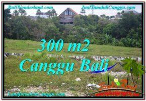 TANAH di CANGGU DIJUAL 300 m2 di Canggu Umalas