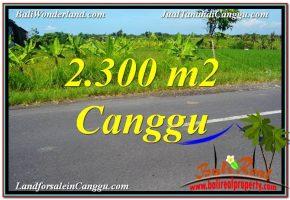 JUAL TANAH MURAH di CANGGU BALI 2,300 m2  View sawah,gunung, lingkungan villa