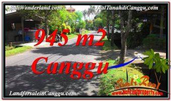 JUAL TANAH di CANGGU 9.45 Are di Canggu Pererenan