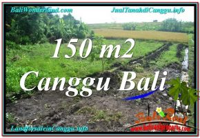 JUAL TANAH di CANGGU 150 m2  View sawah