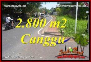 TANAH di CANGGU DIJUAL 2,800 m2 di CANGGU BATU BOLONG