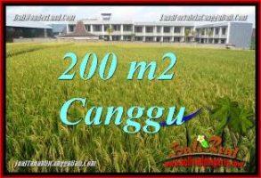 TANAH di CANGGU DIJUAL 200 m2 VIEW SAWAH, LINGKUNGAN VILLA