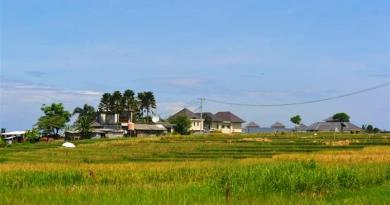 jual tanah murah di Canggu