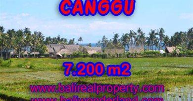 Tanah di Canggu dijual 72 Are di Canggu pererenan Bali
