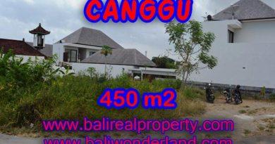 Tanah di Canggu Bali dijual 4,5 are di Batu Bolong
