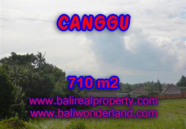 Jual tanah di Canggu Bali 710 m2 view sawah dan sungai di Canggu Brawa