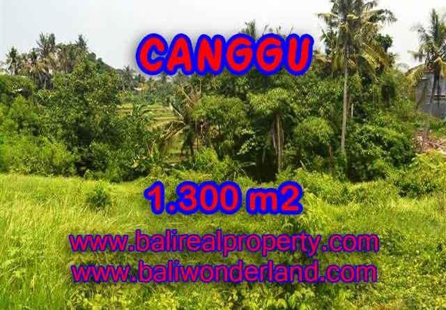 TANAH DI CANGGU MURAH DIJUAL TJCG136 - INVESTASI PROPERTY DI BALI