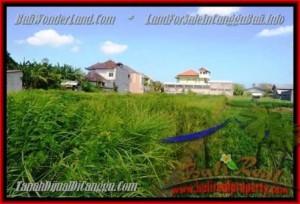 DIJUAL MURAH TANAH di CANGGU 770 m2 di Canggu Kerobokan