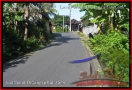 JUAL TANAH di CANGGU 1,000 m2 View sawah link villa