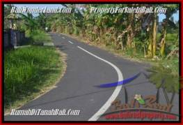 TJCG179 DIJUAL TANAH DI CANGGU BALI - LAND FOR SALE IN CANGGU BALI 08