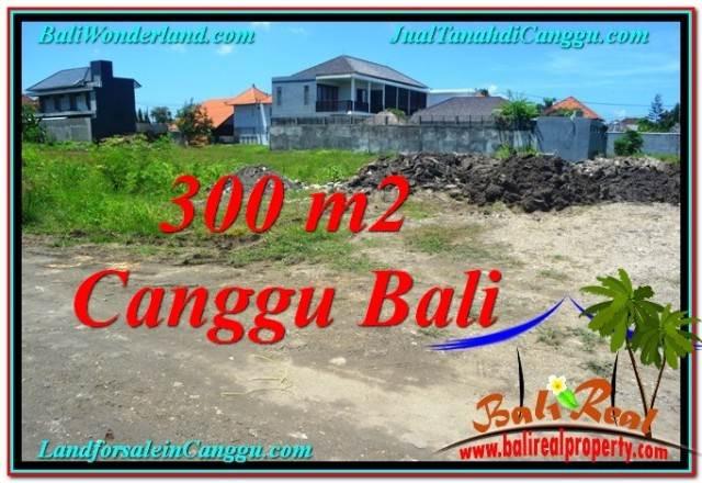 TANAH MURAH di CANGGU BALI 300 m2 di Canggu Brawa