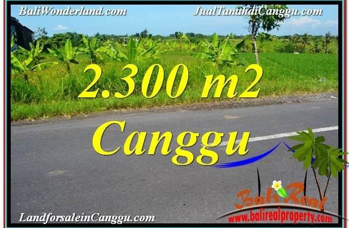 TANAH JUAL MURAH CANGGU 23 Are View sawah,gunung, lingkungan villa
