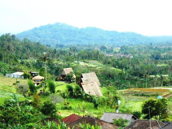 Tanah di Tabanan dijual
