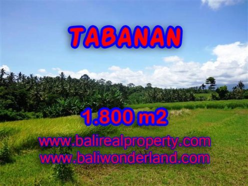 MURAH ! TANAH DIJUAL DI TABANAN TJTB106