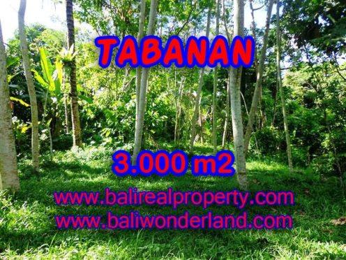 INVESTASI PROPERTI DI BALI - TANAH DIJUAL DI TABANAN BALI MURAH TJTB109