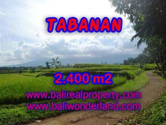 DIJUAL MURAH TANAH DI TABANAN BALI TJTB126 - PELUANG INVESTASI PROPERTY DI BALI