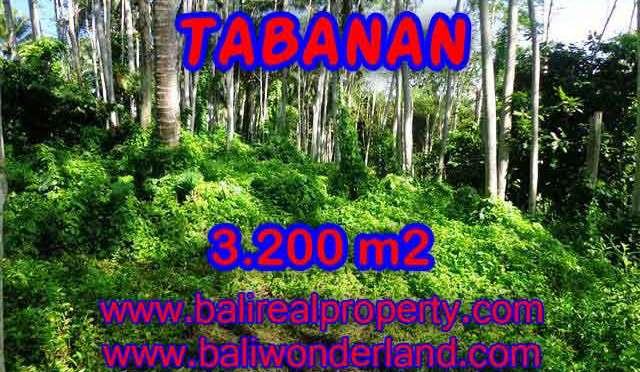 MURAH ! TANAH DIJUAL DI TABANAN BALI TJTB120 - INVESTASI PROPERTY DI BALI