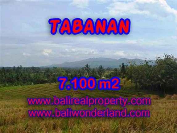 TANAH DI BALI DIJUAL MURAH DI TABANAN CUMA RP 850.000 / M2 - INVESTASI PROPERTY DI BALI