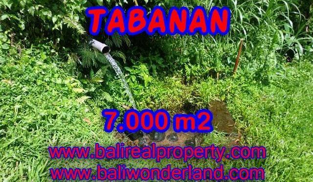 INVESTASI PROPERTI DI BALI - DIJUAL TANAH MURAH DI TABANAN TJTB089