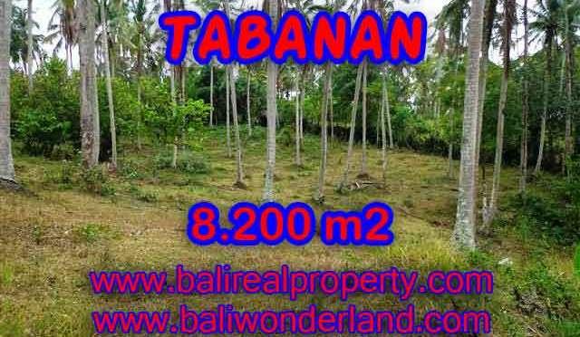 Peluang Investasi Properti di Bali - Jual Tanah murah di TABANAN TJTB142