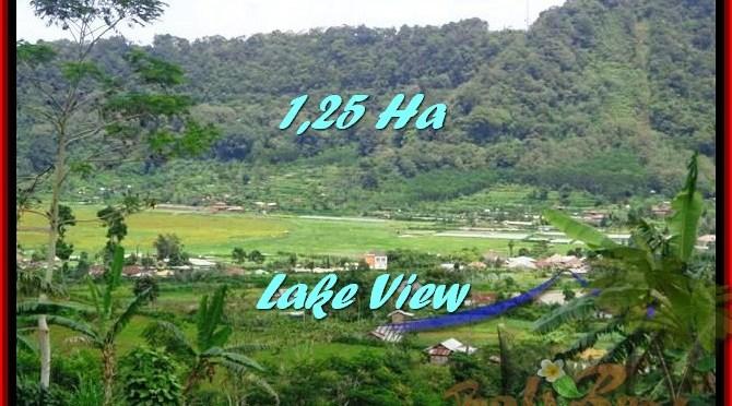 TANAH JUAL MURAH TABANAN 12,500 m2 view danau buyan dan gunung