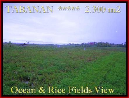 JUAL TANAH MURAH di TABANAN BALI 23 Are View laut, sawah dan gunung
